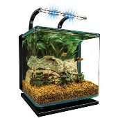 Aquarium for Desktop